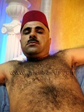 turkish-furry-body
