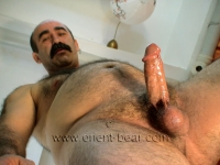 A very hairy turk, one of my best model