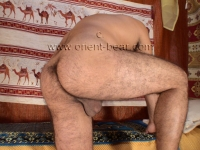 He shows his plump, hairy and firm Ass Cheeks in Doggy Style. His cock is dick like a Club and his Hair are trimmed.