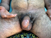 He strips naked and does his show. He also shows his ass in doggy style. He has hard plump full hairy ass cheeks and a full hairy ass crack. He jerks very aggressively with horny noises. His cumshot is sitting and it shoots a large amount of cum on his stomach. His cumshot can be seen from two camera positions.