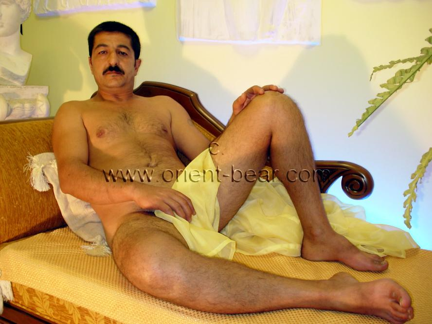 A young kurdish bear with a clean shaved cock jerks naked on a chaise longue. His body is a bit thick but not fat and he has little body hair. His cock is a normal size and his pubic hair is clean shaven. In this amatuer gay video is naked in the studio on a chaise longue and masturbates.