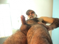 He jerks off in many positions. an older turkish man with a totally hairy body, a long cock and full hairy ass cheeks in a turkish gay video.