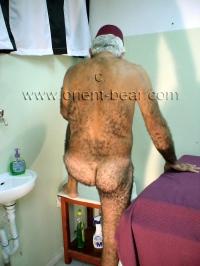 older turkish Silver Bear