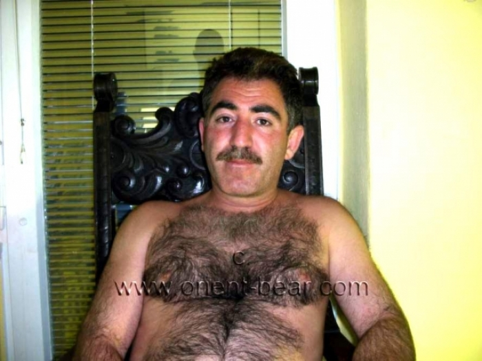 Sefer - a very strongly haired turkish furry bear with big balls. (id879)