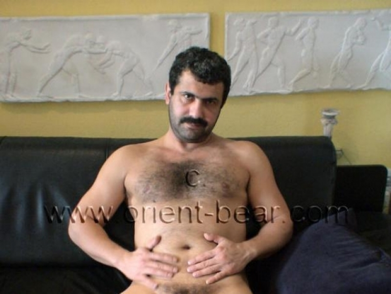 Selahattin - a young turkish Bear with a very big, fat and thick Cock (id12)