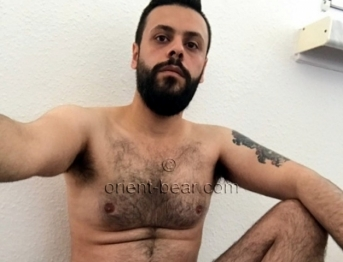 Mahmoud - is a hairy Syrian Bear with a hot Cock and a full black Bush (ID1356)