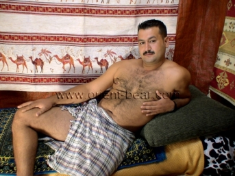 Cengiz - is a nice always horny young Turkish Bear.
