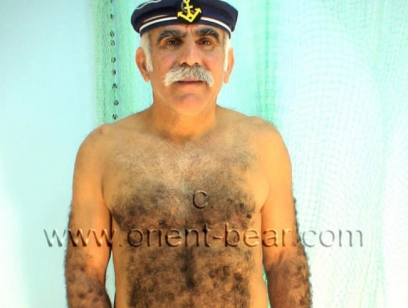 Ibrahim M. - is a turkish furry silver Bear with a full hairy Body (ID162)