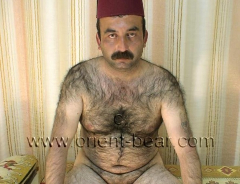 A naked turkish bear with a totally hairy body. (id204)