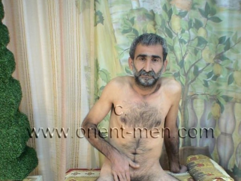 Haluk - a big, slender very nice turkish furry Bear with totally hairy Ass (ID207)