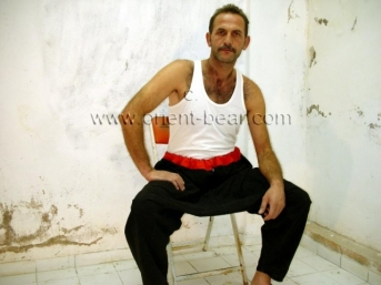 Pala is a turkish truck driver with a totally hairy body. (id544)