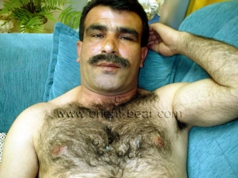Safak - a very hairy turkish man shows his hairy Ass in a dog position (id818)