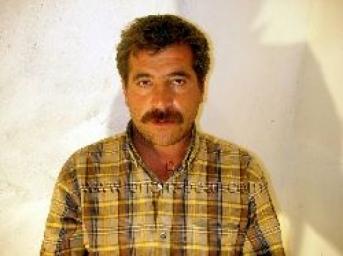 Berdan - is a young Turkish Bear handcuffed as a Prisoner. (id96)