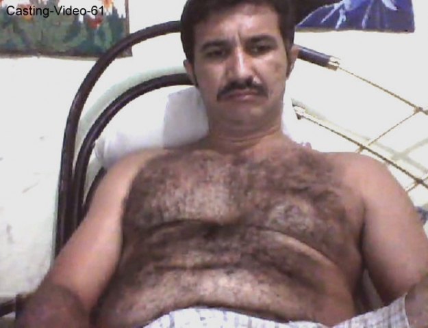 haired iraqi bear